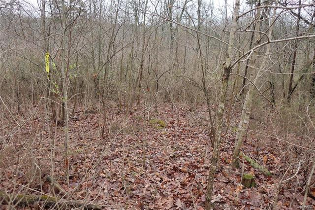 0 9.04 Acres - Dittmer  Road -11